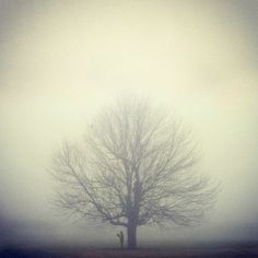Conceptual photography by Nicolas Bruno