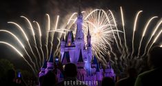 10 Awesome Fireworks Spots You Wish You Knew About Your First Trip - Disney Dining Information
