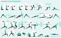 Hip Anatomy, Yoga Anatomy, Moon Salutation, Side Crow, Psoas Release, Hip Mobility, Body Joints, Shoulder Joint, Effects Of Stress