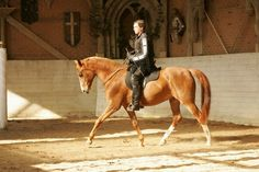 Alexander Nevzorov - training the horse free from violence and force.