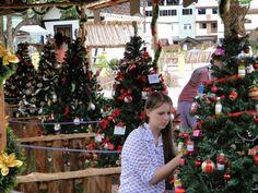 Micro Empresas & Micro Negócios - Posts Árvore mais bonita no Brilho de Natal de Campinho, D. Martins/ES, terá premio em dinheiro - See more at: http://microempresasnegocios-posts.donoleari.com.br/#sthash.b0uiG3Yw.dpuf