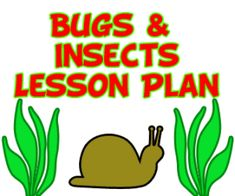 Preschool bug theme lesson plans about insects and theme activities for pre k and kindergarten kids learning about bugs/insects.