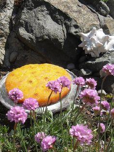 Sticky Orange Polenta cake - half sold before it's even cold! Eat cake on  #Islay!