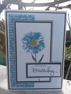 Stampin' Up; Touches of Texture stamp set; Endless Birthday Wishes sentiment