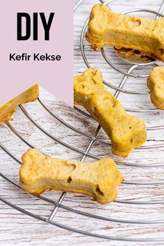 Eine leckere Kombination aus Kefir, MYOKEE und anderen Zutaten. Das musst du ausprobieren!!! @frauchen.backt .. #myokee #myokeelove #hundegesundheit #diy #keksrezepte #hundeleckerlis #backmatten #dogtreats #backenfürhunde #dogbakery #leckerlis #hundesnacks #hund #fröhlicher #hundetraining Smoothie, Kefir, Dairy, Cheese, Food, Carrots, Simple, Apple, Essen