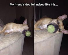 Dump A Day Funny Pictures Of The Day - 73 Pics