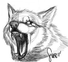 Wolf growl sketch by Werewolfsense.deviantart.com on @DeviantArt