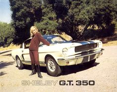 Sketchbook historic cars Pictures: 1965 USA - A special Ford Mustang - SHELBY GT 350
