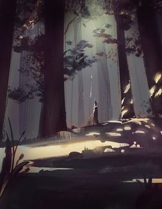 Forest, picture by Victoria Ying