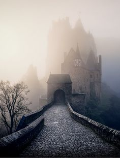 "colorel11: "" ©Max Conrad Eltz castle """