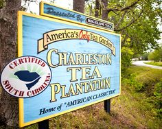 Charleston Tea Plantation on Wadmalaw Island--this is where the tea comes from for Firefly!!!