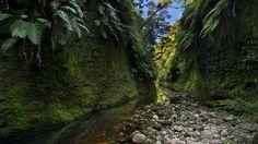Waggon Creek | by Pete Prue