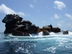 #IslaIsabela #Galapagos en #PuertoVillamil, #GalapagosIslands http://www.ecuadorgalapagostravels.ec/index.php?pagina=gpstravels