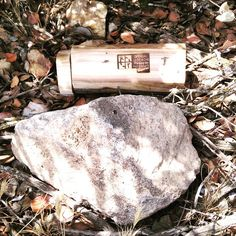 Nice fake log geocache with the official geocaching logo (that would be a dead giveaway to non-muggles that you'd found the cache even if you didn't notice the hinged end).  #IBGCp