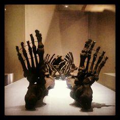 Gristhorpe Man. Rotunda Museum. Scarborough. 2014 My Childhood, Museum, Nude, History, Historia, Museums