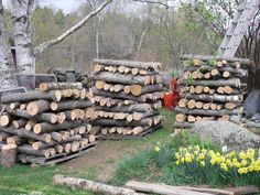 Making a stack out of logs inoculated with mushrooms