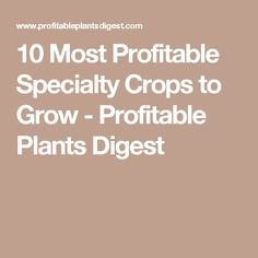 10 Most Profitable Specialty Crops to Grow - Profitable Plants Digest