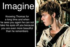 that'd be a dream. haha way older than me Maze Runner Funny, Maze Runner Thomas, Newt Maze Runner, Maze Runner Movie, Maze Runner Series, Minho, Maze Runner Characters, Bae, Hottest Guy Ever