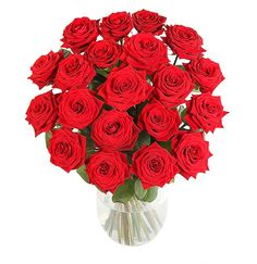special red rose gift
