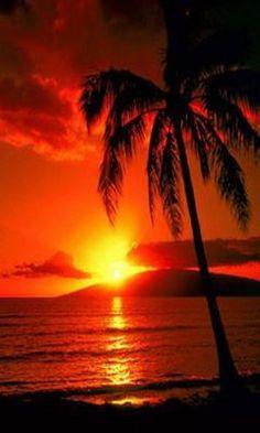 Tropical sunset - https://VacacionesReales.com
