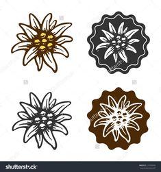 Edelweiss Flower Tattoo Edelweiss Flower Symbol Alpinism Alps Germany Logo Stock Vector