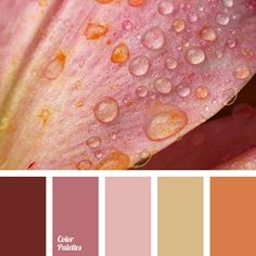 Color Palette #3558 | Color Palette Ideas