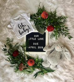 Oh baby!   Pregnancy announcement onesie, gender reveal onesie baby bodysuit, adoption bodysuit, IVF or rainbow new baby reveal outfit by Little Bird Basics on Etsy.