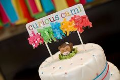 Curious Cami's 3rd Birthday | CatchMyParty.com