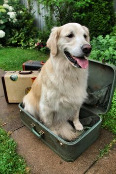 All my bags are packed!