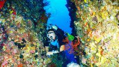 A lot of beautiful coral reefs~ YA!