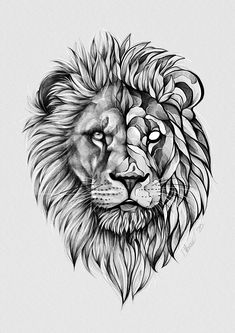 Lion Tattoo Design, Lion Design, Tattoo Design Drawings, Cool Art Drawings, Tattoo Designs Men, Animal Drawings, Lion Head Tattoos, Wolf Tattoos, Animal Tattoos