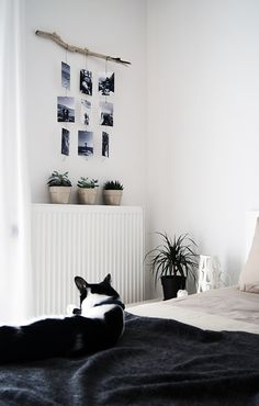 Great Idea to decorate your white walls - photo mobile /// Tolle Idee wie man…
