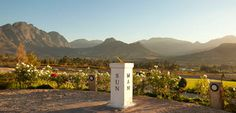 Sport Helicopters | Cape Town's Number One Tour and Adventure Flight Operator - Winelands