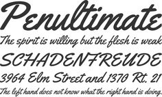 Yellowtail, free Open Type font dowlonad. Also available on Google fonts.