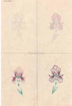 tarama Arabic Pattern, Pattern Art, Arabesque, Jewelry Design Drawing, Illumination Art, Islamic Patterns, Font Art, Turkish Art, Color Pencil Art