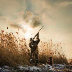 The Hunter. #Hunting #Waterfowl