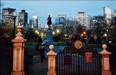 When visiting #Boston, you must... take a stroll through the beautiful #BostonPublicGarden.