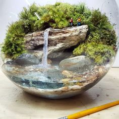 Bora tomar um banho de cachoeira pra Double-tap to see more awesome terrariums! Add a Miniature Waterfall Pond or River to your Fairy Garden Mini Terrarium, Terrarium Scene, Terrarium Plants, Succulent Terrarium, Succulents Garden, Indoor Garden, Indoor Plants, Paludarium, Miniature Fairy Gardens