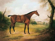 A Saddled Bay Hunter in the Grounds of Bryn-Y-Pys, Flintshire by Daniel Clowes (1774-1829)