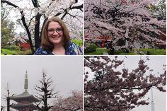 Adventures in Japan, Part Exploring Tokyo – Adventures In A Campervan Campervan, Exploring, Tokyo, Photo Wall, Japan, Adventure, Photograph, Tokyo Japan, Explore