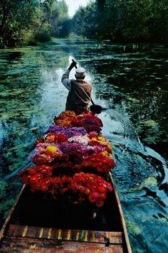 FLOWER SELLER,  DAL LAKE, SRINAGAR, KASHMIR, 1996 STEVE MCCURRY