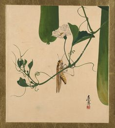 Shibata Zeshin | Lacquer Paintings of Various Subjects: Grasshopper on Gourd Vine | Japan | Meiji period (1868–1912) | The Metropolitan Museum of Art