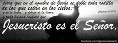 Toda rodila se doblará  y toda lengua confesará que Jesucristo es el Señor. Jesucristo Reina