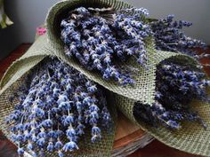 Dried Lavender Bunch - Grosso French Lavender Bouquet - Dried Floral - Wedding Flower Decor - Rustic - Fragrant Lavender - Preserved