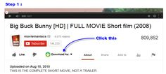 Enjoy the No. 1 Youtube Video Downloader out there...