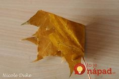 creative-ideas-diy-beautiful-maple-leaf-rose-2