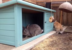 Love this conversion from a small second hand hutch to a snazzy rabbit hideaway for the run.