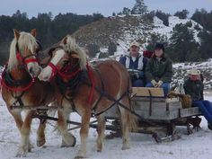 I could enjoy a nice sleigh ride during the holidays, and keep my feet warm with #eastlandshoe