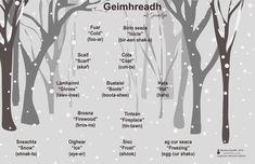 Irish Gaelic Language, Gaelic Words, Irish Weather, Cold Weather, Irish Proverbs, Irish Landscape, Irish Roots, Luck Of The Irish, The More You Know