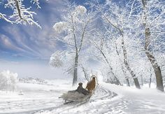 """""""Winter Day"""" by Igor Zenin - Oh how this looks like a wonderful christmas holiday."""